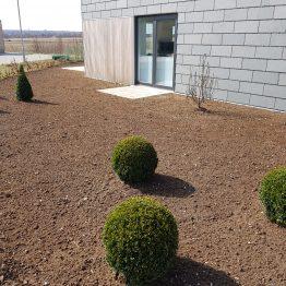 Anlæg af ny græsplæne